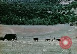 Image of Monticello Charlottesville Virginia USA, 1944, second 15 stock footage video 65675031619