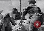 Image of German lifestyle early 1930s Germany, 1932, second 43 stock footage video 65675031658