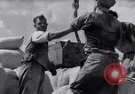 Image of German lifestyle early 1930s Germany, 1932, second 44 stock footage video 65675031658
