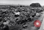 Image of British resolve and rebuilding in Battle of Britain Europe, 1941, second 15 stock footage video 65675031690