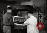 Image of 10th Tactical Reconnaissance Wing Germany, 1955, second 59 stock footage video 65675031828
