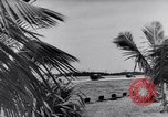 Image of Mosquito Boat Logo Florida United States USA, 1941, second 8 stock footage video 65675031867