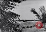 Image of Mosquito Boat Logo Florida United States USA, 1941, second 9 stock footage video 65675031867