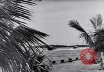Image of Mosquito Boat Logo Florida United States USA, 1941, second 10 stock footage video 65675031867