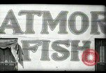 Image of Restaurants in Miami  Miami Florida USA, 1936, second 12 stock footage video 65675031876