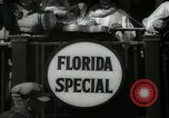 Image of Tourist activities in West Palm Beach West Palm Beach Florida USA, 1936, second 22 stock footage video 65675031894