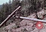 Image of helicopters California United States USA, 1970, second 3 stock footage video 65675031950