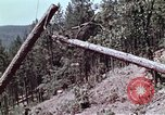 Image of helicopters California United States USA, 1970, second 4 stock footage video 65675031950