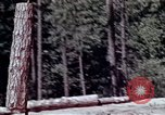 Image of helicopters California United States USA, 1970, second 23 stock footage video 65675031950