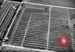 Image of Ford River Rouge Complex Dearborn Michigan USA, 1935, second 49 stock footage video 65675031982