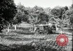 Image of Fordson model F tractor Oregon United States USA, 1920, second 3 stock footage video 65675031983