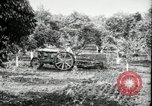 Image of Fordson model F tractor Oregon United States USA, 1920, second 7 stock footage video 65675031983