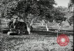 Image of Fordson model F tractor Oregon United States USA, 1920, second 11 stock footage video 65675031983