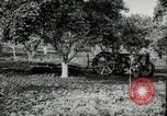 Image of Fordson model F tractor Oregon United States USA, 1920, second 17 stock footage video 65675031983