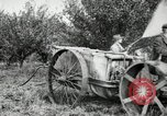 Image of Fordson model F tractor Oregon United States USA, 1920, second 56 stock footage video 65675031984