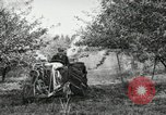 Image of Fordson model F tractor Oregon United States USA, 1920, second 57 stock footage video 65675031984