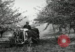 Image of Fordson model F tractor Oregon United States USA, 1920, second 59 stock footage video 65675031984