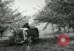 Image of Fordson model F tractor Oregon United States USA, 1920, second 62 stock footage video 65675031984