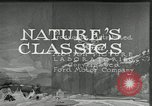 Image of Film Nature's Classics United States USA, 1920, second 19 stock footage video 65675031985