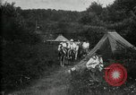 Image of Warren G Harding camping with Ford, Firestone, and Edison Maryland United States USA, 1921, second 48 stock footage video 65675032004