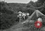 Image of Warren G Harding camping with Ford, Firestone, and Edison Maryland United States USA, 1921, second 50 stock footage video 65675032004