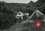 Image of Warren G Harding camping with Ford, Firestone, and Edison Maryland United States USA, 1921, second 52 stock footage video 65675032004