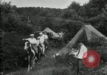 Image of Warren G Harding camping with Ford, Firestone, and Edison Maryland United States USA, 1921, second 55 stock footage video 65675032004