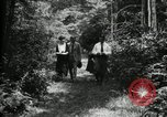 Image of group camping Maryland United States USA, 1921, second 18 stock footage video 65675032007