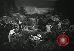 Image of Flower and garden show Seattle Washington USA, 1941, second 19 stock footage video 65675032026