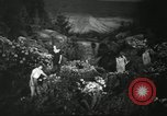 Image of Flower and garden show Seattle Washington USA, 1941, second 20 stock footage video 65675032026