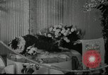 Image of Flower and garden show Seattle Washington USA, 1941, second 47 stock footage video 65675032026