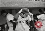 Image of Boston Red Sox vs New York Yankees New York United States USA, 1967, second 31 stock footage video 65675032127
