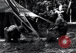 Image of female soldiers Korea, 1954, second 8 stock footage video 65675032215