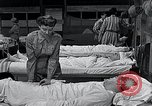 Image of female soldiers Korea, 1954, second 51 stock footage video 65675032215