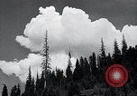 Image of lumbering United States USA, 1937, second 7 stock footage video 65675032221