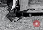 Image of people in rural area United States USA, 1935, second 5 stock footage video 65675032230