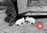 Image of people in rural area United States USA, 1935, second 11 stock footage video 65675032230