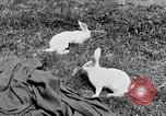 Image of people in rural area United States USA, 1935, second 25 stock footage video 65675032230