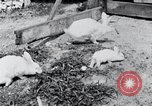 Image of people in rural area United States USA, 1935, second 30 stock footage video 65675032230