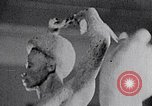 Image of Richmond Barthe sculpture of male and female dancing New York City USA, 1937, second 48 stock footage video 65675032303