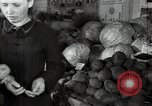 Image of fruits and vegetables exhibition Kolomna Russia, 1947, second 54 stock footage video 65675032347
