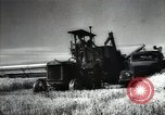 Image of new harvest Turkmenistan, 1949, second 30 stock footage video 65675032367