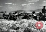 Image of new harvest Turkmenistan, 1949, second 36 stock footage video 65675032367