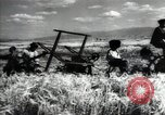 Image of new harvest Turkmenistan, 1949, second 38 stock footage video 65675032367