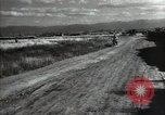 Image of new harvest Turkmenistan, 1949, second 49 stock footage video 65675032367