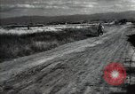 Image of new harvest Turkmenistan, 1949, second 50 stock footage video 65675032367