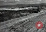 Image of new harvest Turkmenistan, 1949, second 51 stock footage video 65675032367