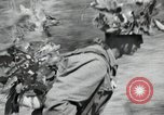 Image of Republic of Korea troops United States USA, 1953, second 26 stock footage video 65675032381