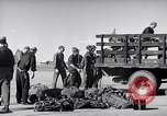 Image of Convair B-36 Roswell New Mexico USA, 1953, second 22 stock footage video 65675032437