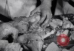 Image of Fat and oil recycling World War 2 Staten Island New York USA, 1945, second 32 stock footage video 65675032525